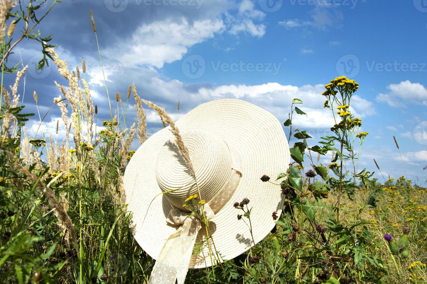 A straw hat with a bow in the rays photo