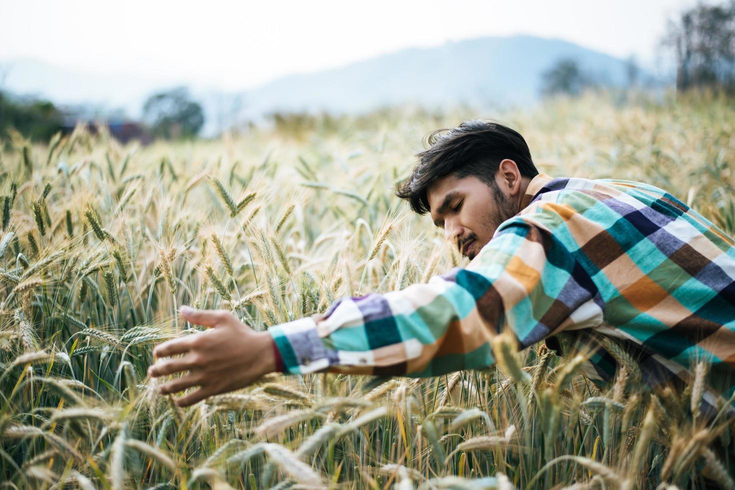 guapo, granjero, con, barlay, campo foto