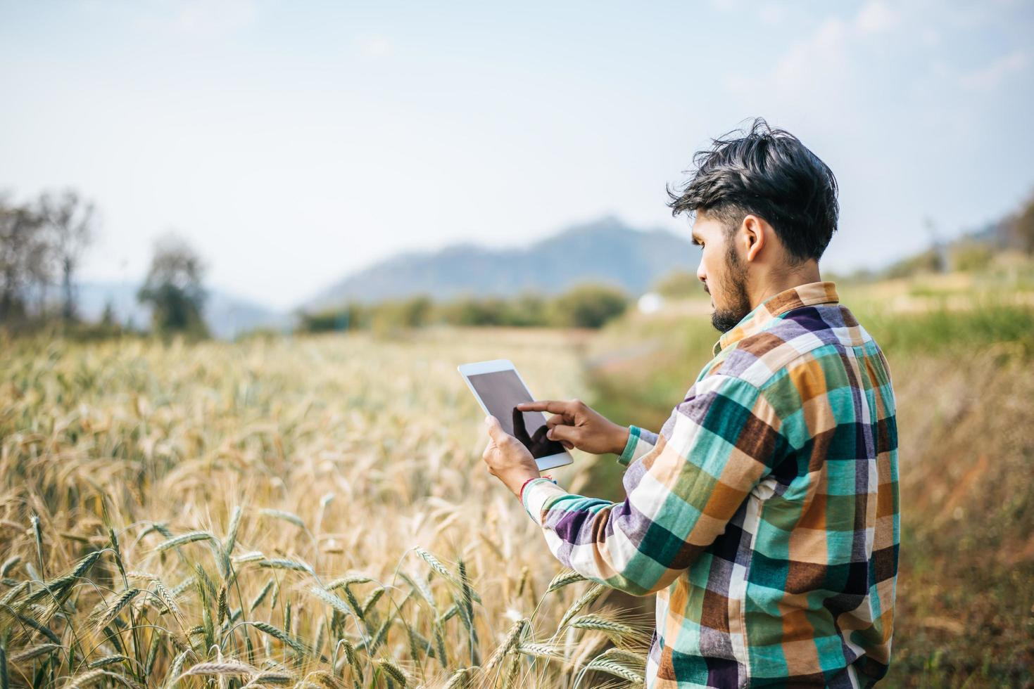 Smart farmer checking barley farm with tablet computer photo