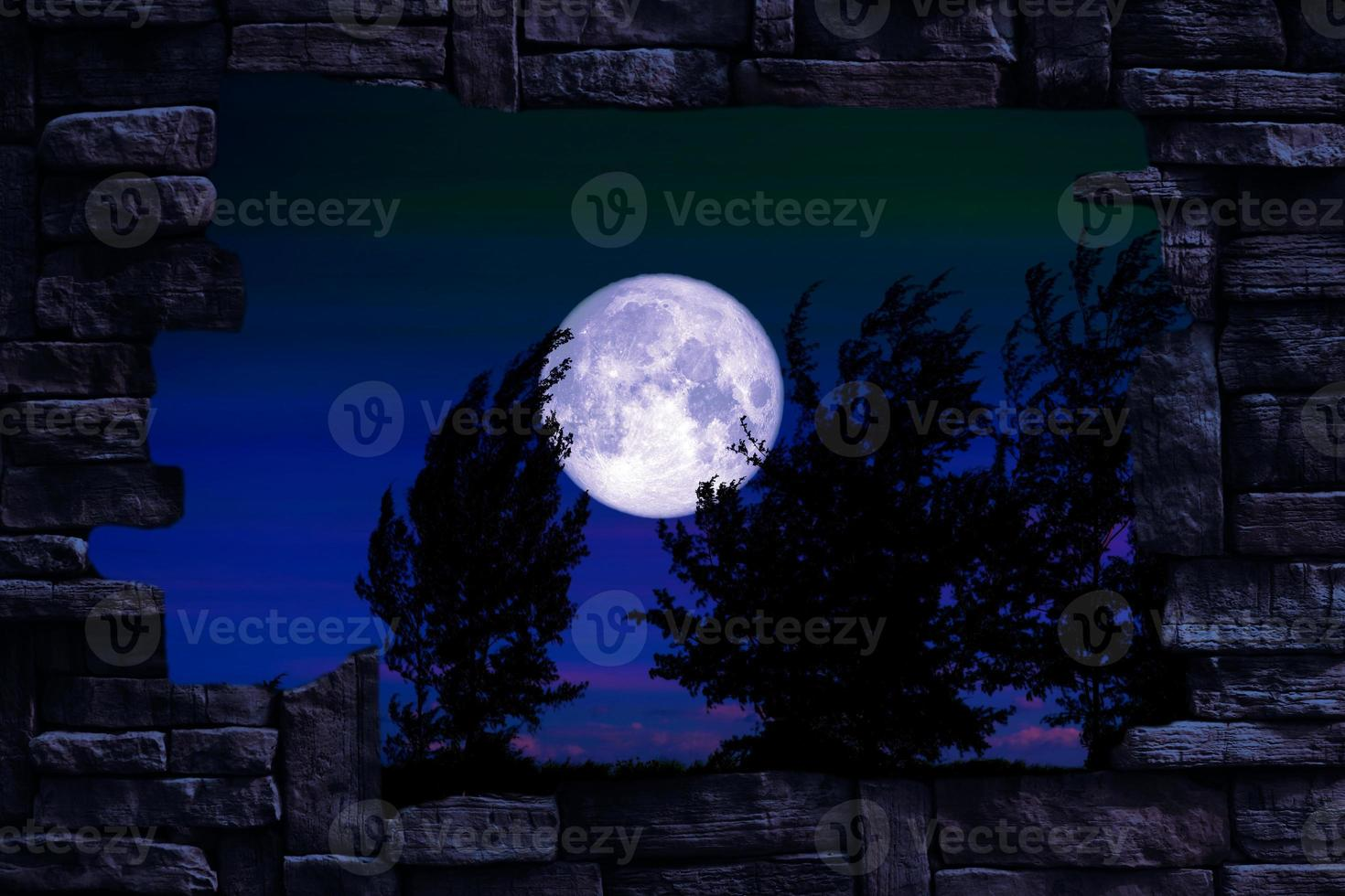 Full worm moon and tree in the field and night sky in hole stone wall photo
