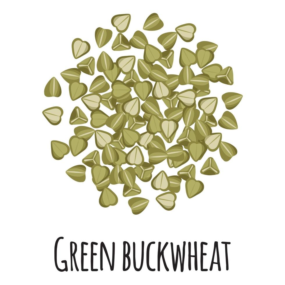 trigo sarraceno verde para el diseño, la etiqueta y el embalaje del mercado del granjero de la plantilla. vector