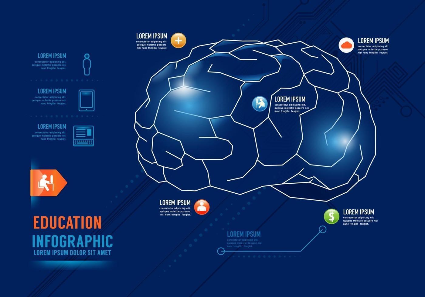 Infographics education Brain Concept Design options banner. vector