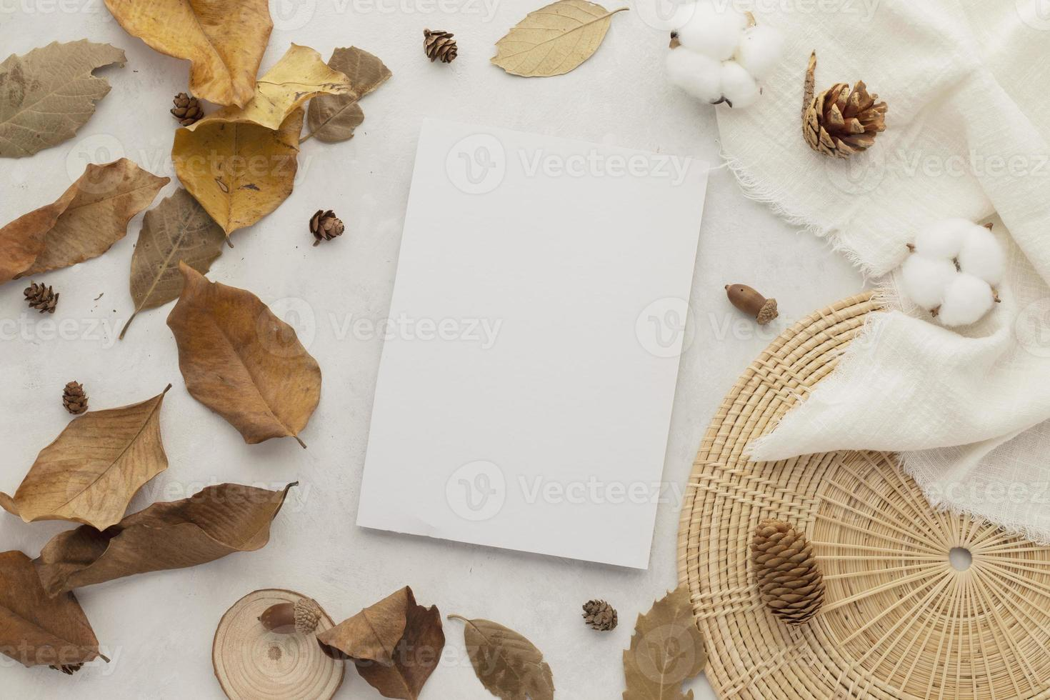 Autumn composition, dried leaves. Cotton flowers and pine cones on white background. Flat lay, top view with copy space photo