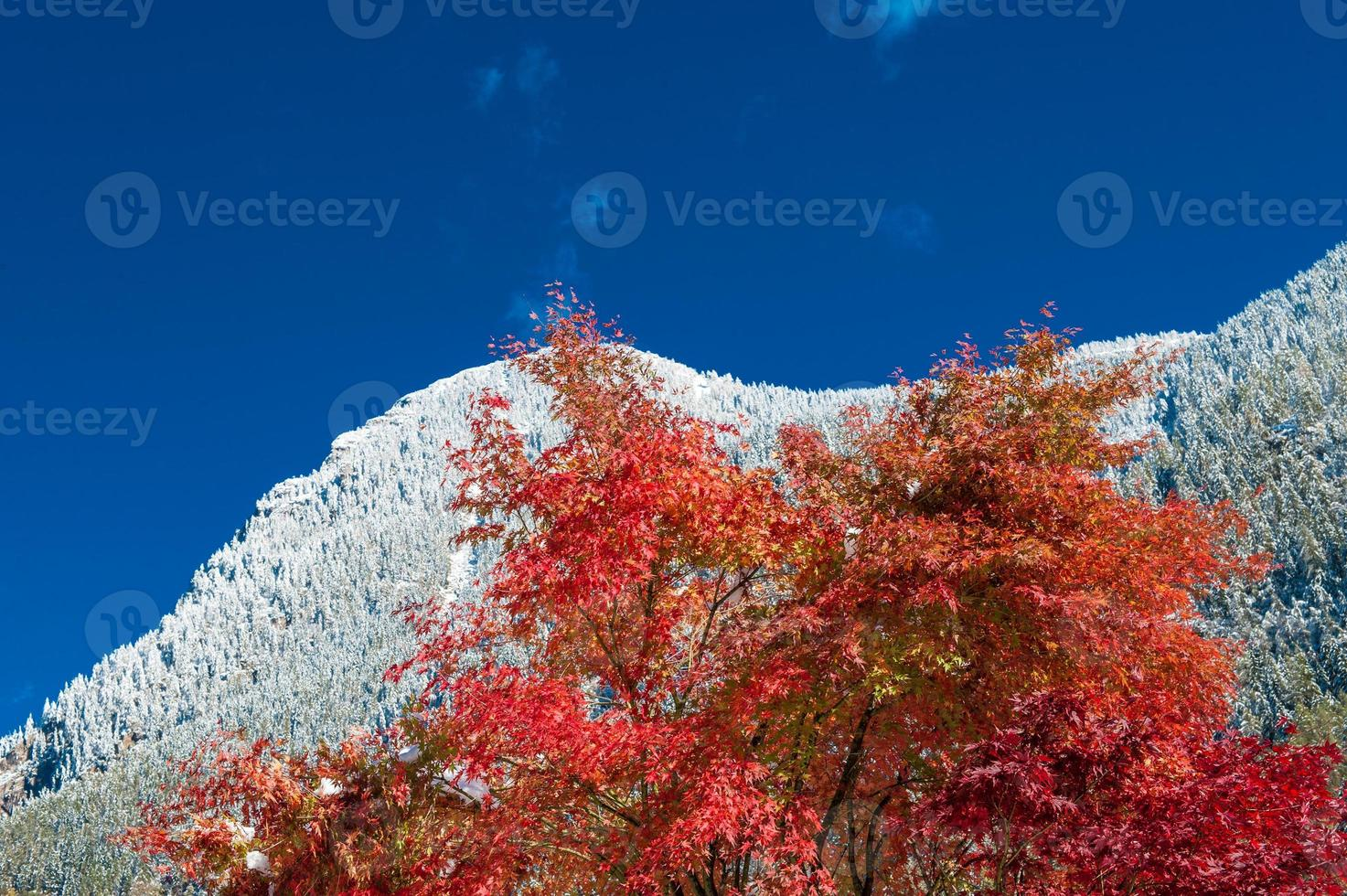 first snow on the mountains in autumn photo