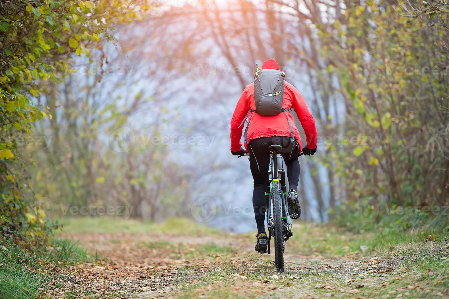 ciclismo de montaña en la calle en el bosque foto