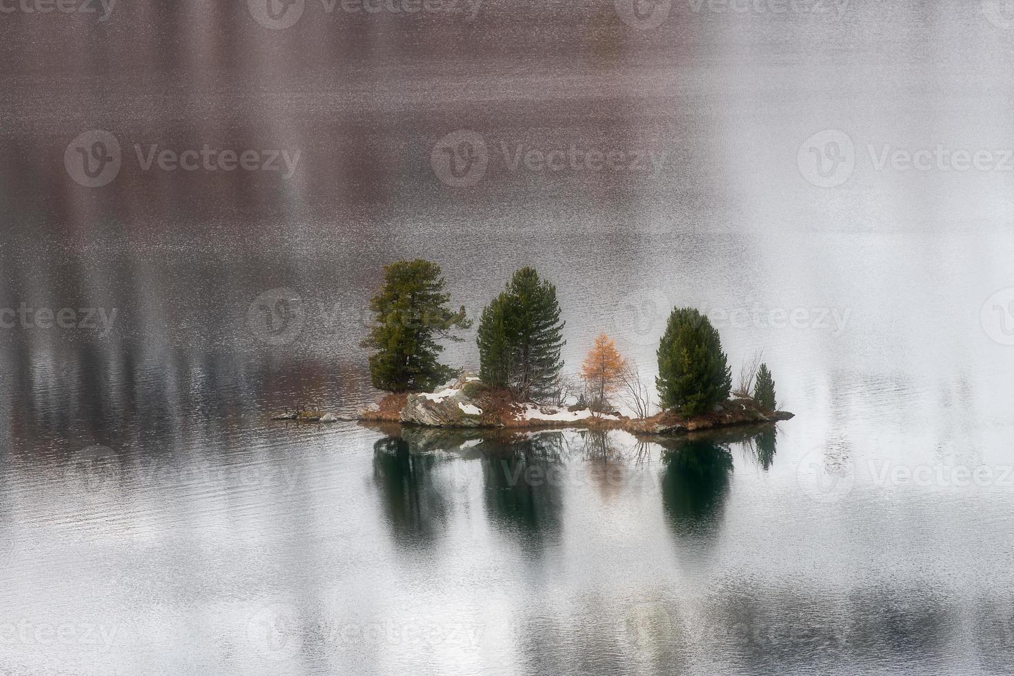 pequeña isla con plantas en un lago de montaña foto