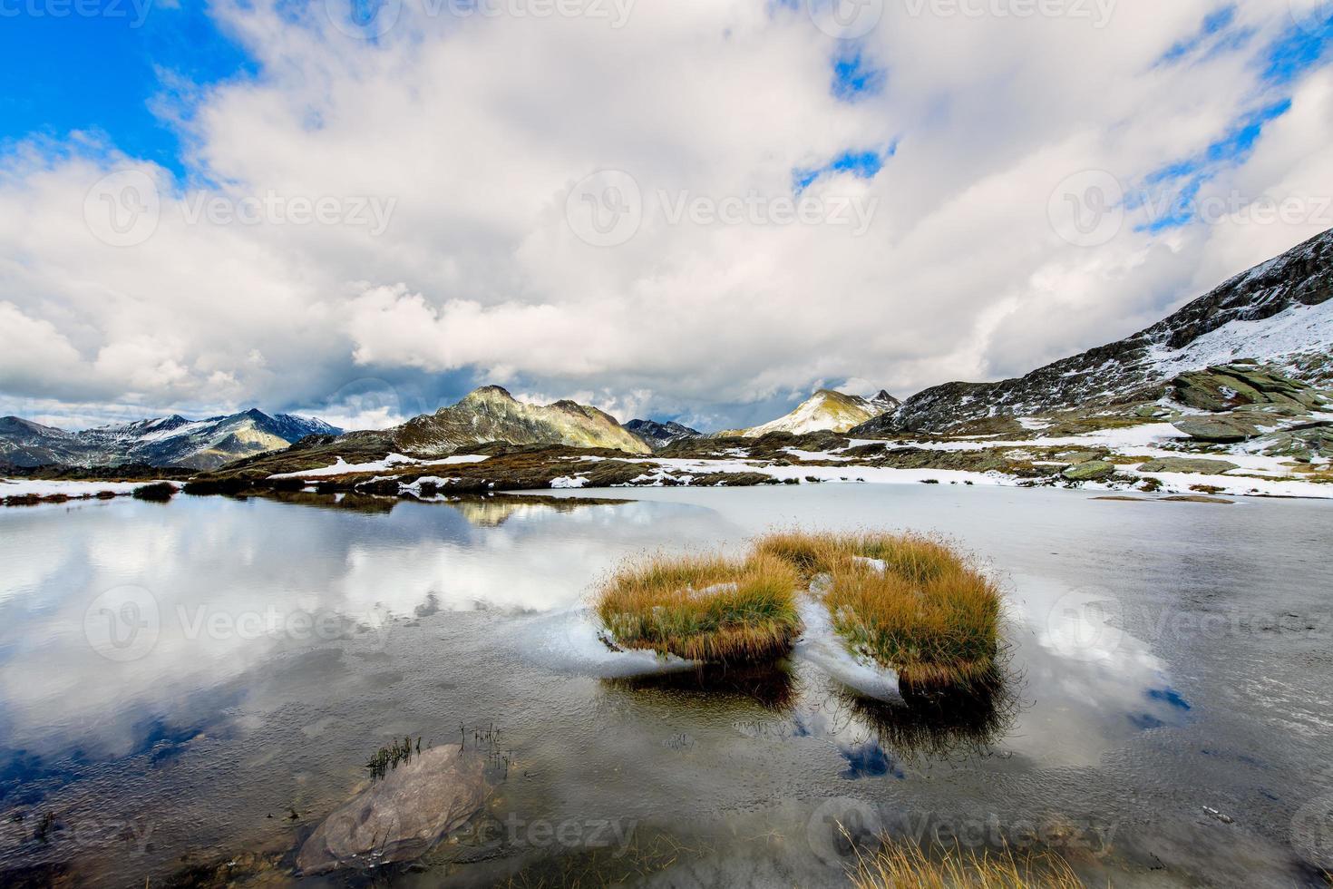 hebras de hierba dentro de un pequeño lago alpino foto