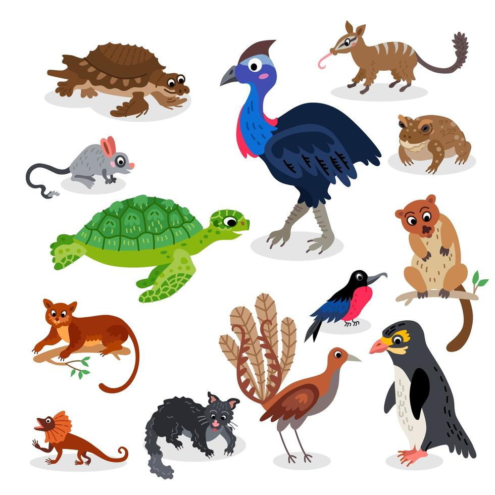 Wild Oceania animals set in flat style vector