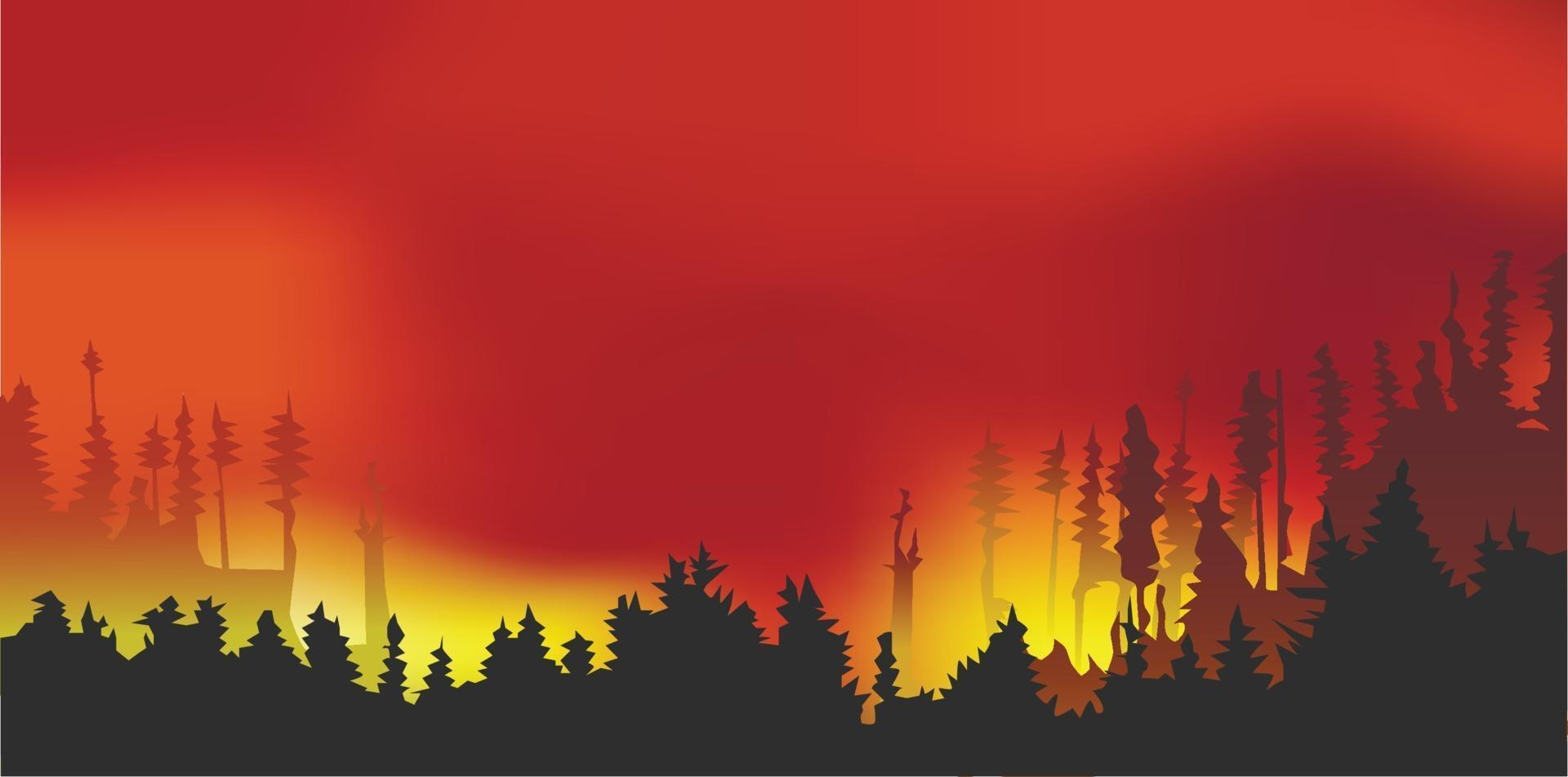 Forest fires, wildfire disaster illustration, burning trees, vector