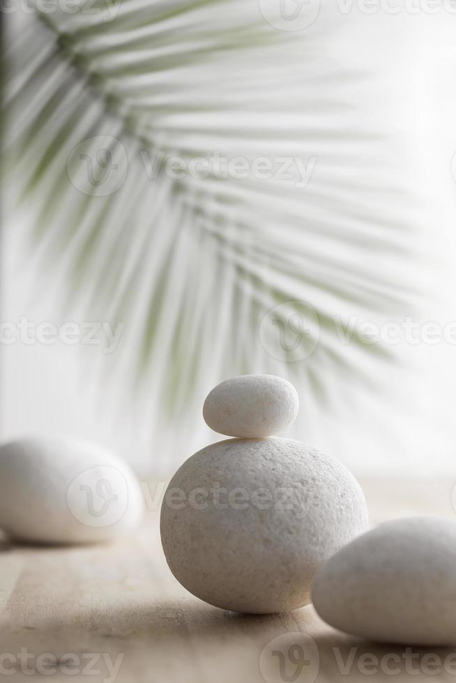 White stone on wooden surface with blurred plant background. photo