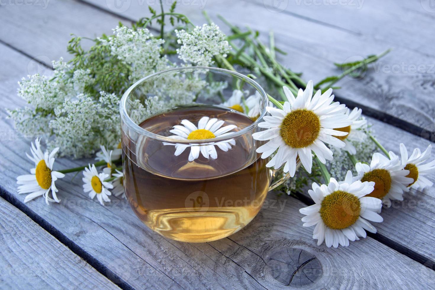 té de camomila. Bodegón de verano con flores silvestres y bebida de manzanilla. foto