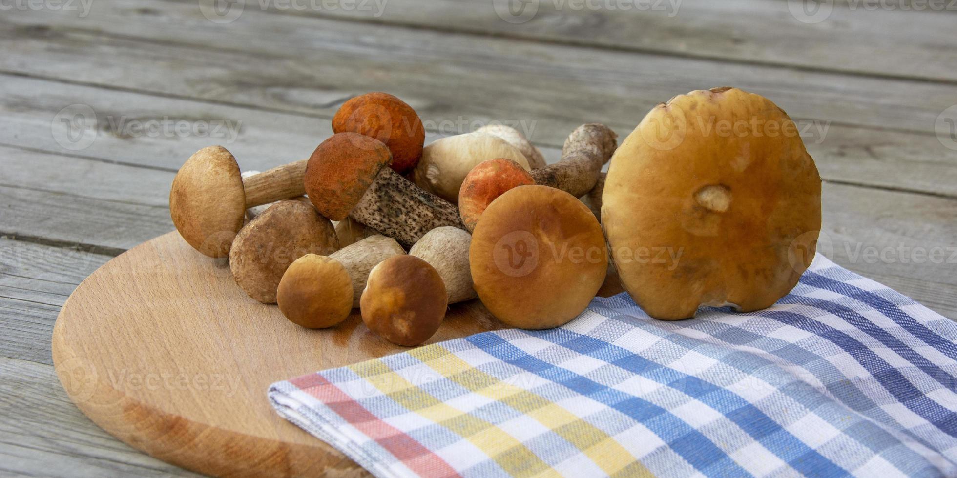 hongos porcini en una tabla de cortar. hongos comestibles foto