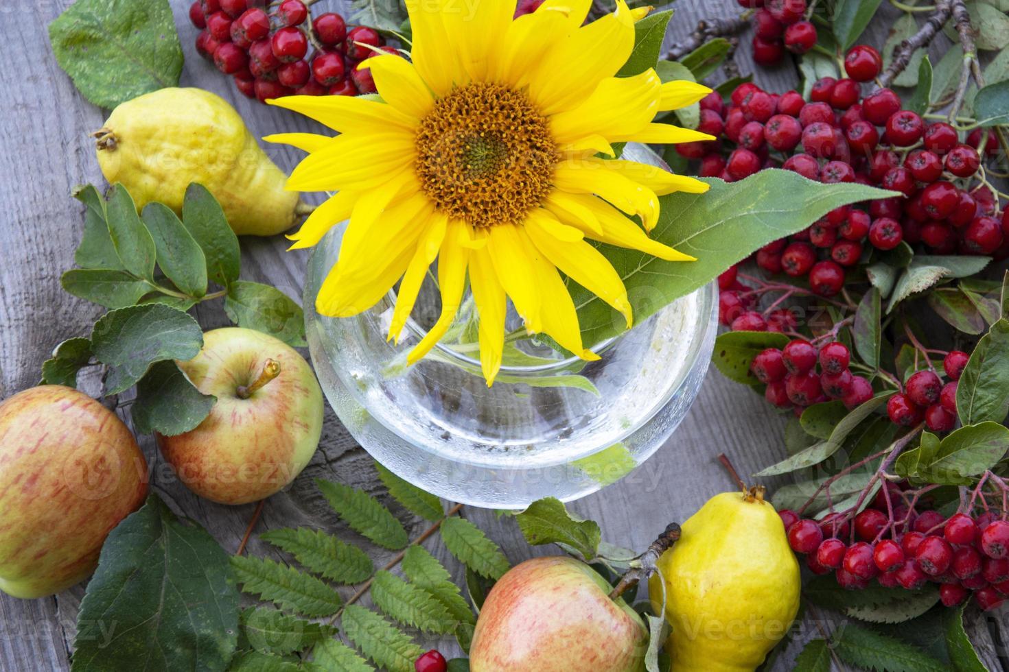 fondo floral. flor de girasol en un jarrón de vidrio, frutas foto