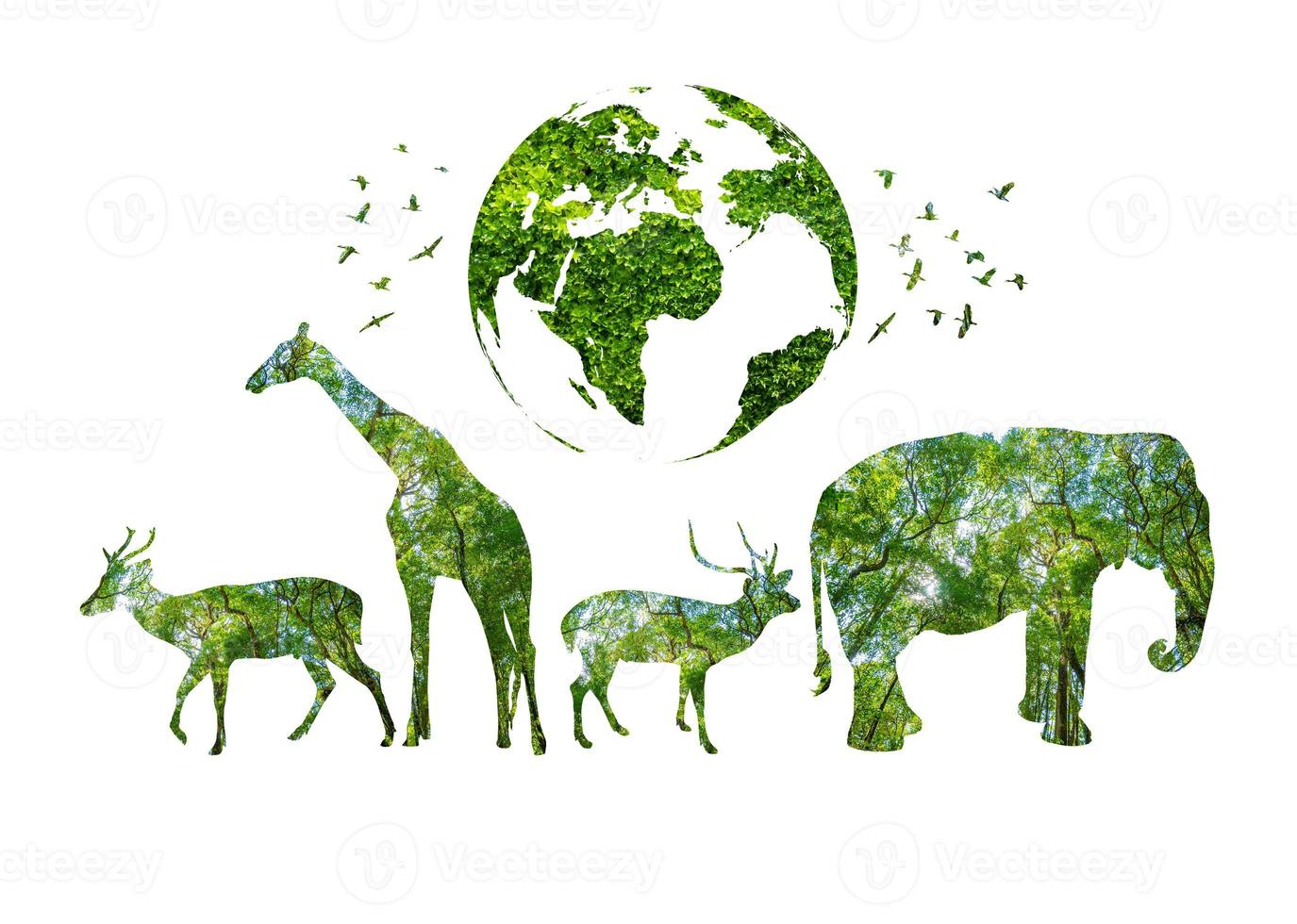 World Wildlife Day forest silhouettes in the shape of a wild animal photo