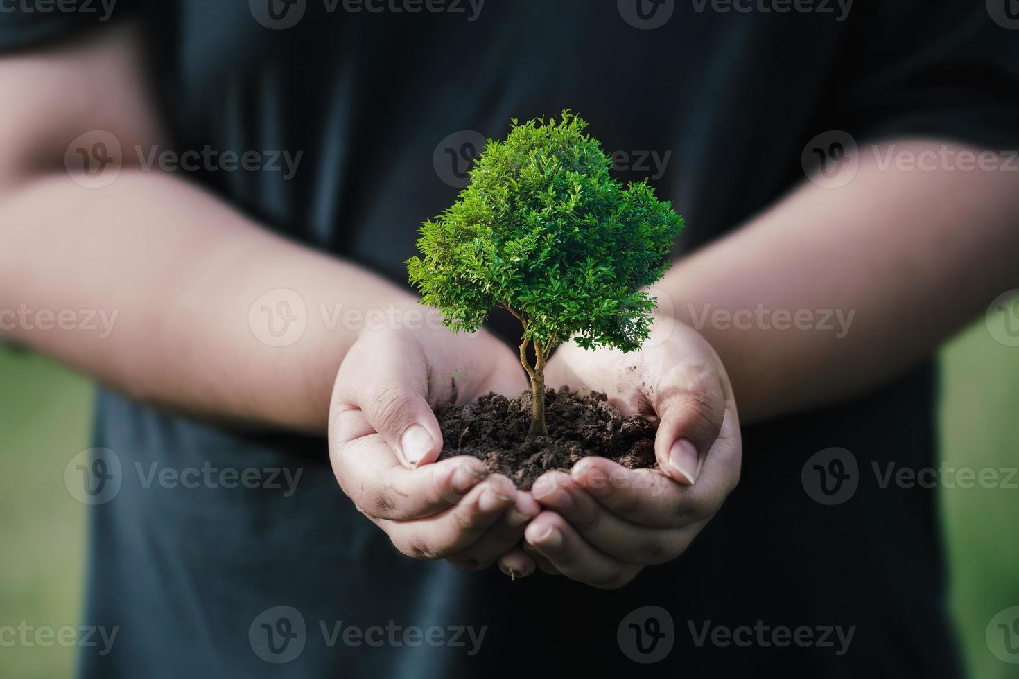 CSR concept and business planting saplings of trees photo
