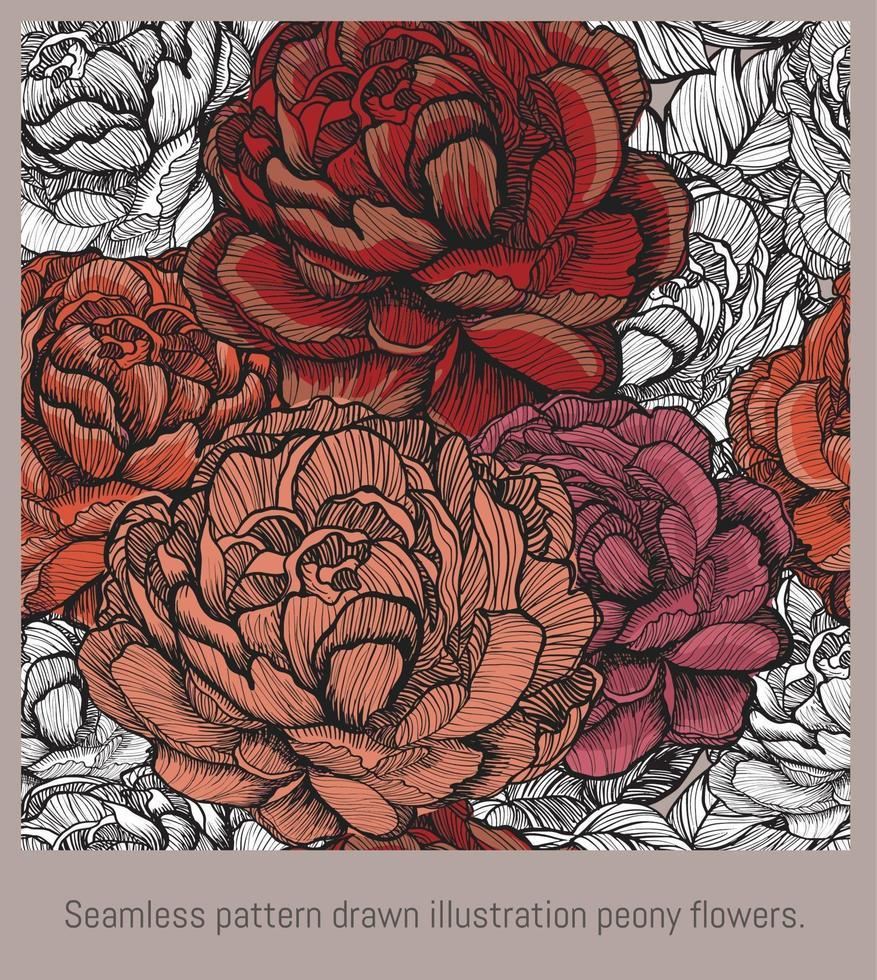 flores de peonía de ilustración dibujada de patrones sin fisuras. vector