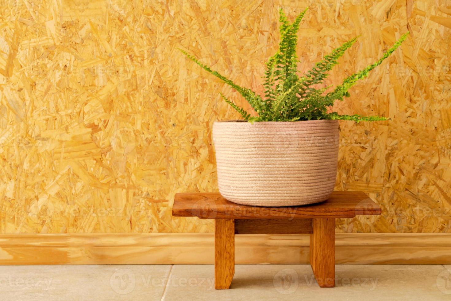 Un helecho en una maceta tejida sobre una pared de madera de color marrón claro foto