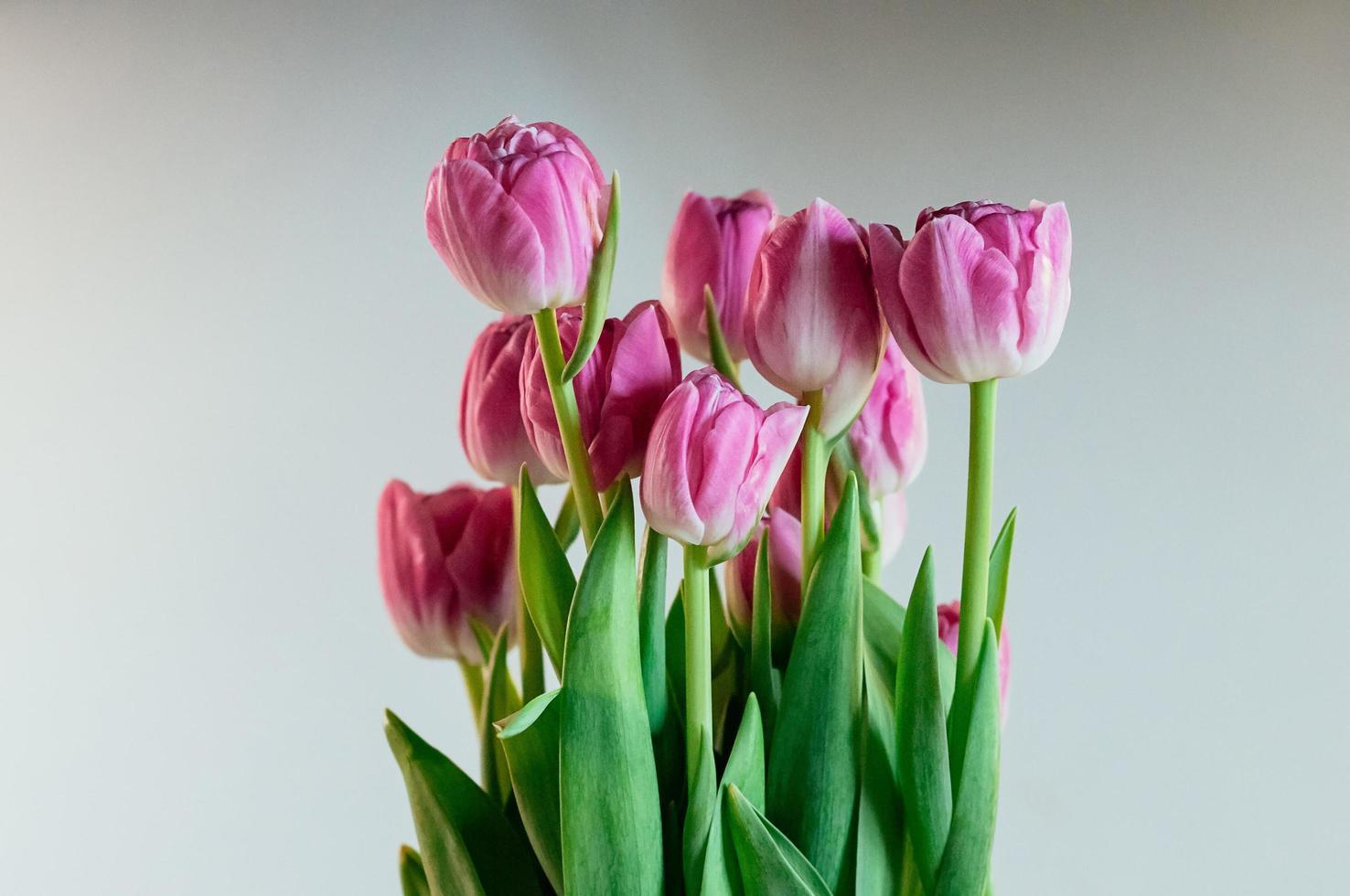 Encantadoras flores rosas peonía tulipanes foto