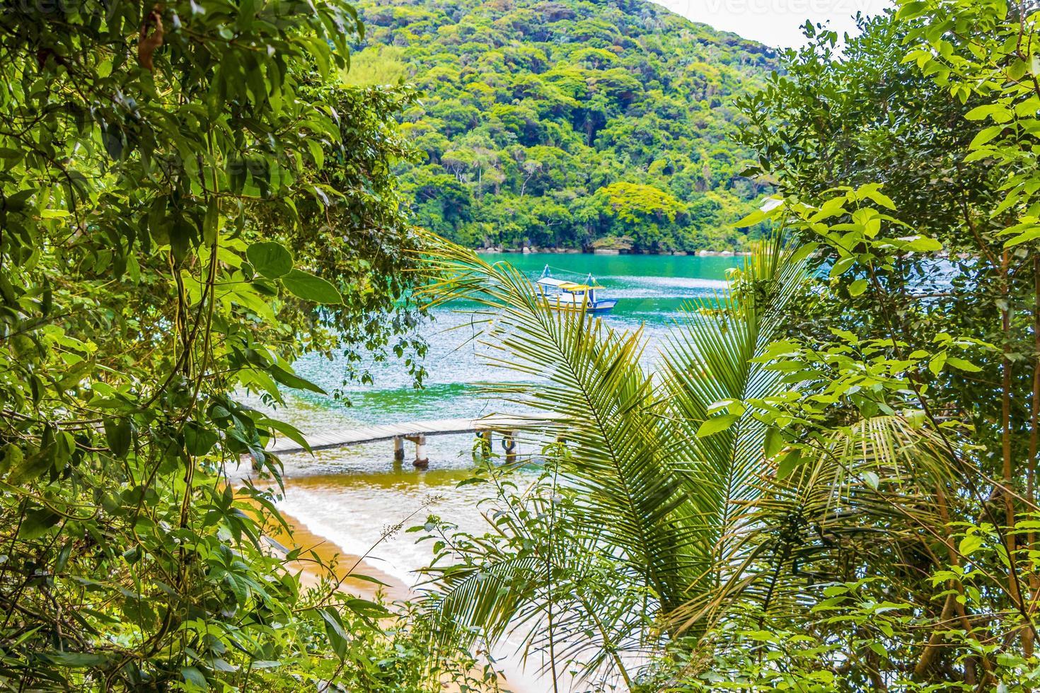 Mangrove and Pouso beach on tropical island Ilha Grande Brazil. photo