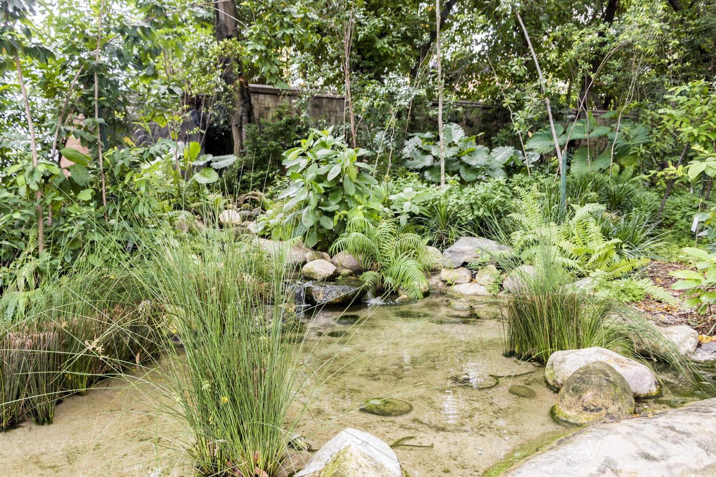 hermoso estanque de jardín en medio de la ciudad de kuala lumpur, malasia. foto