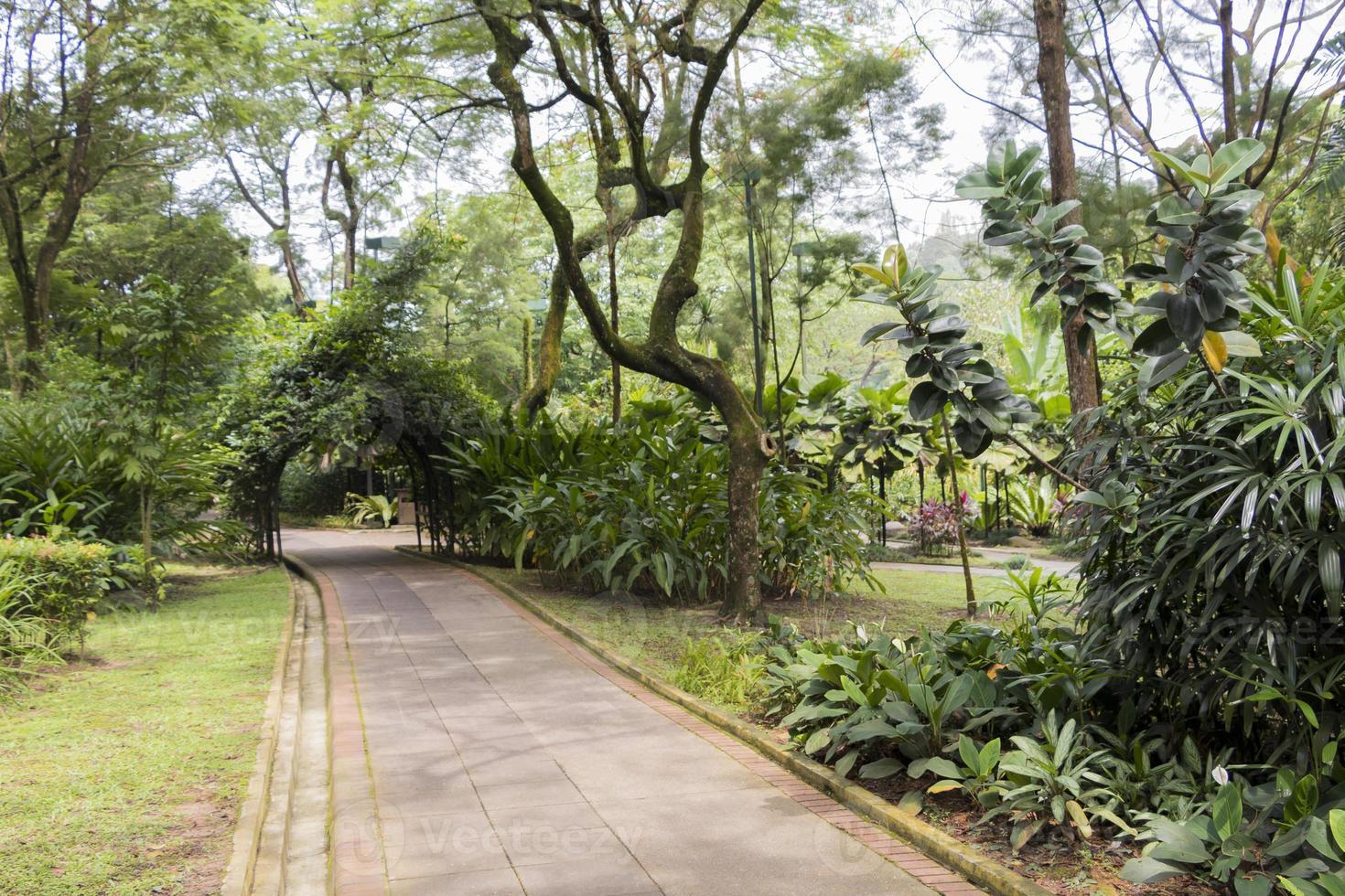 parque perfecto y limpio jardines botánicos de perdana en kuala lumpur. foto