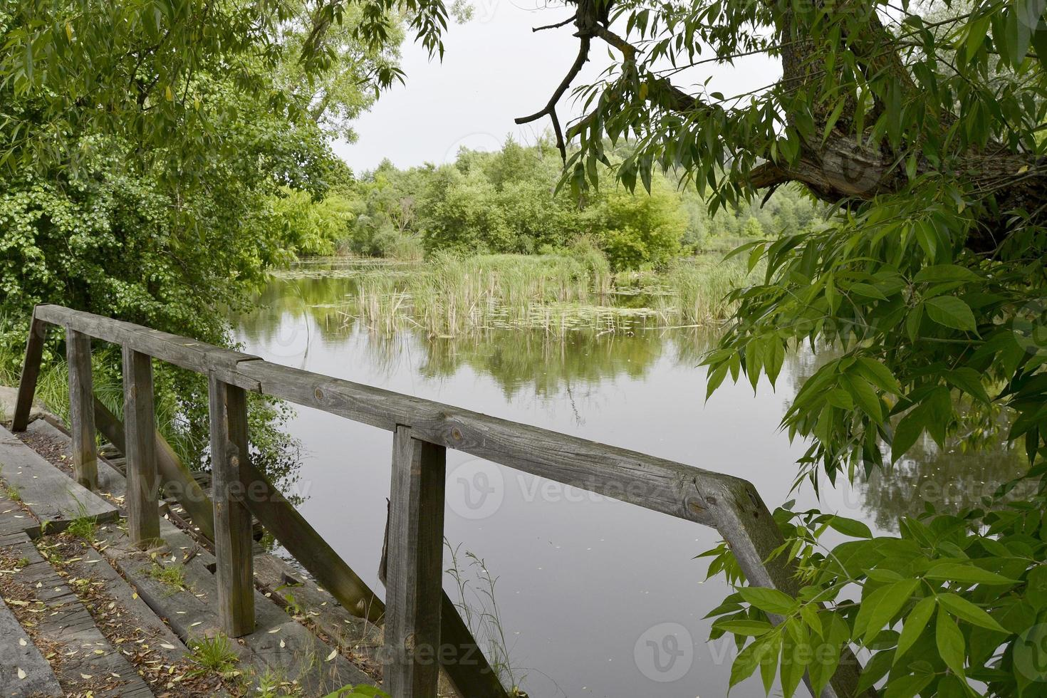 Wooden bridge over river photo