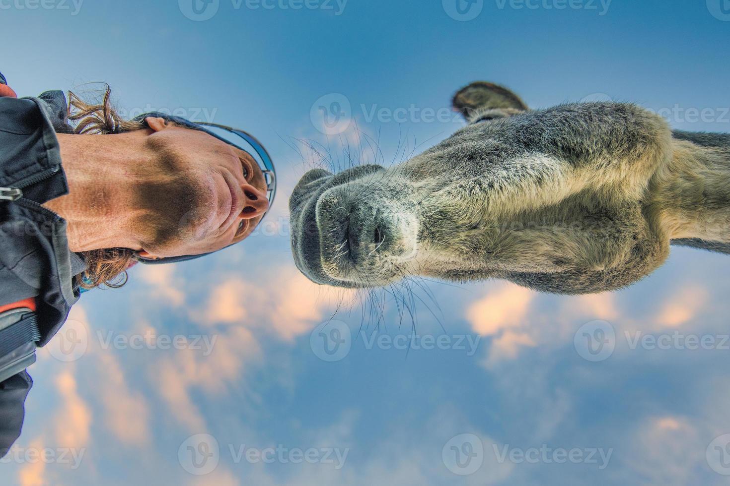 hombre y burro encuentro cercano foto