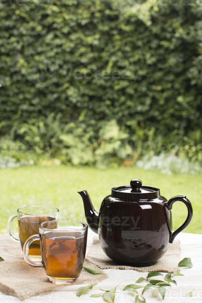 Dos tazas transparentes con té de hierbas, tetera en el jardín de la mesa foto