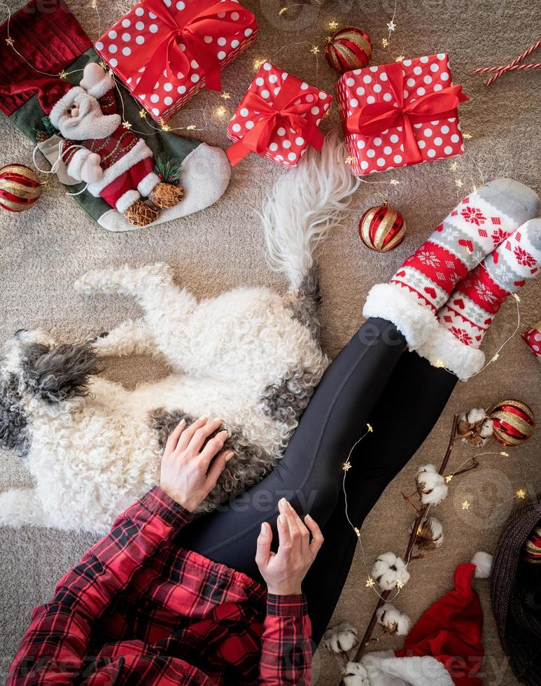 Top view of woman in funny socks celebrating Christmas with her dog photo