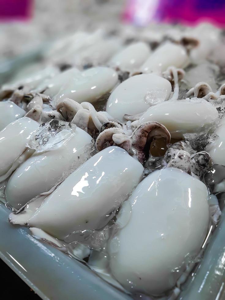 Sepia cruda fresca. Calamar crudo con hielo en puesto en el mercado de mariscos foto