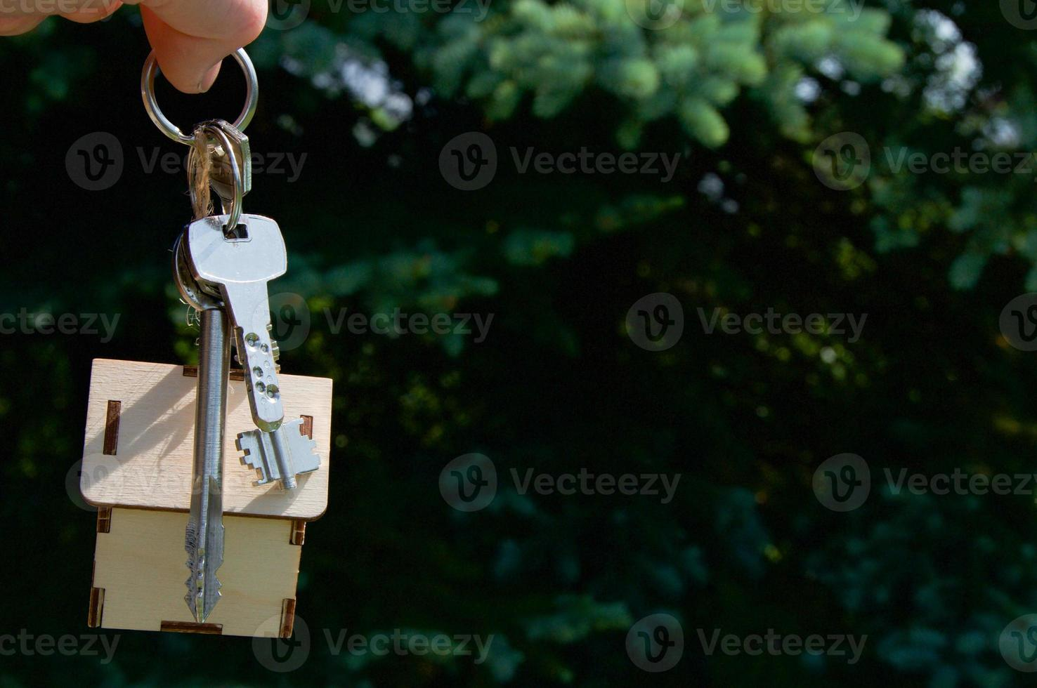 casa de llaves sobre fondo verde casa de alquiler foto