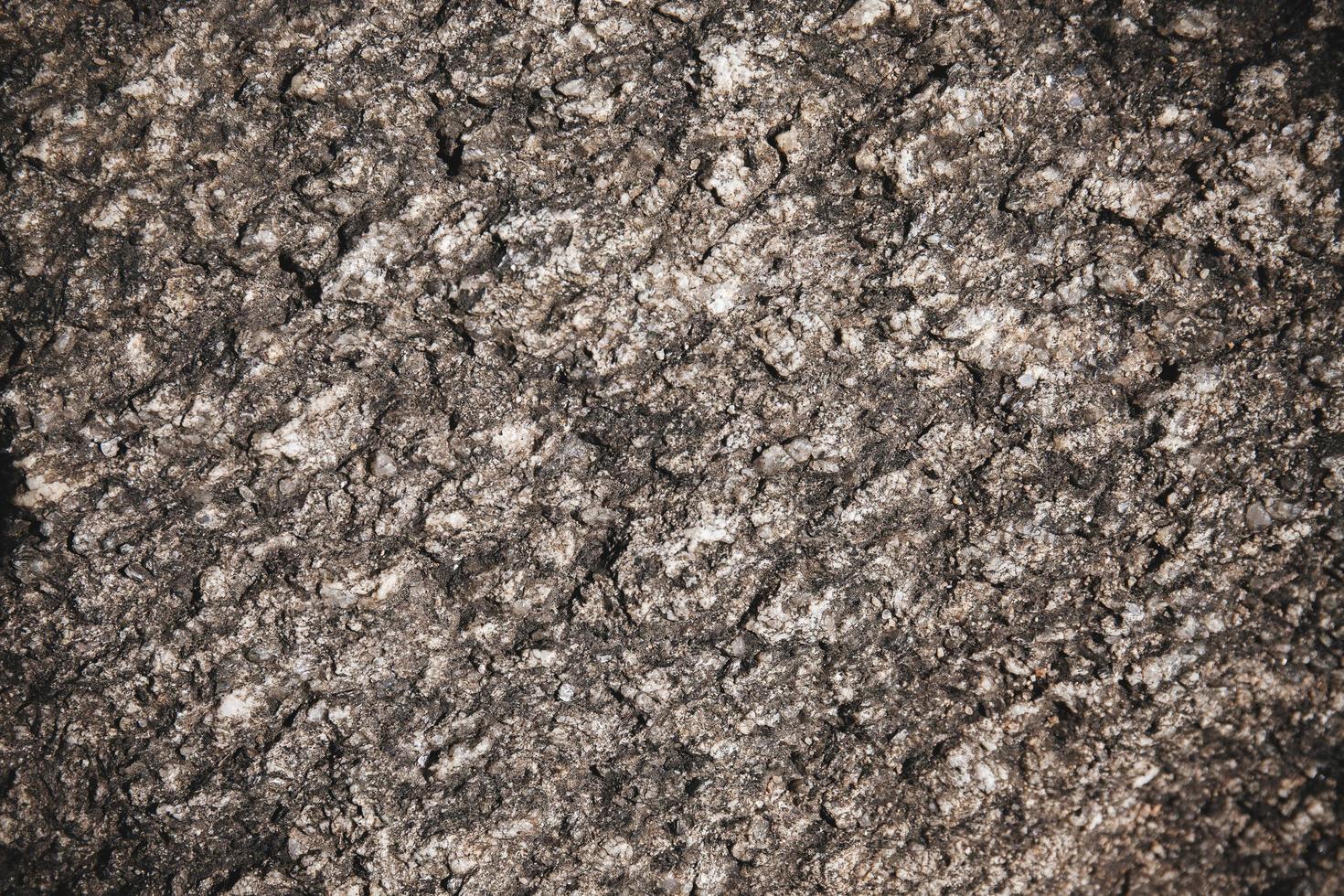 Corteza de árbol de textura rústica patrón natural abstracto antecedentes, primer plano foto