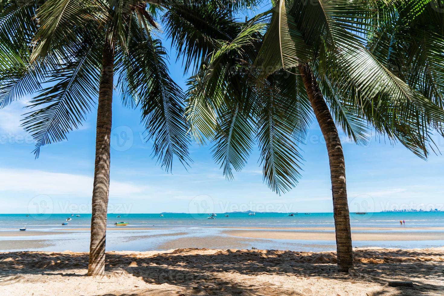 Cocotero y paisaje de playa con cielo azul para vacaciones de verano foto