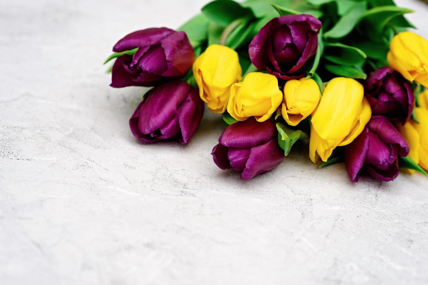 ramo de flores de tulipán de primavera púrpura y amarillo sobre un fondo claro de cerca. copie el espacio. día de la Madre. día Internacional de la Mujer. foto