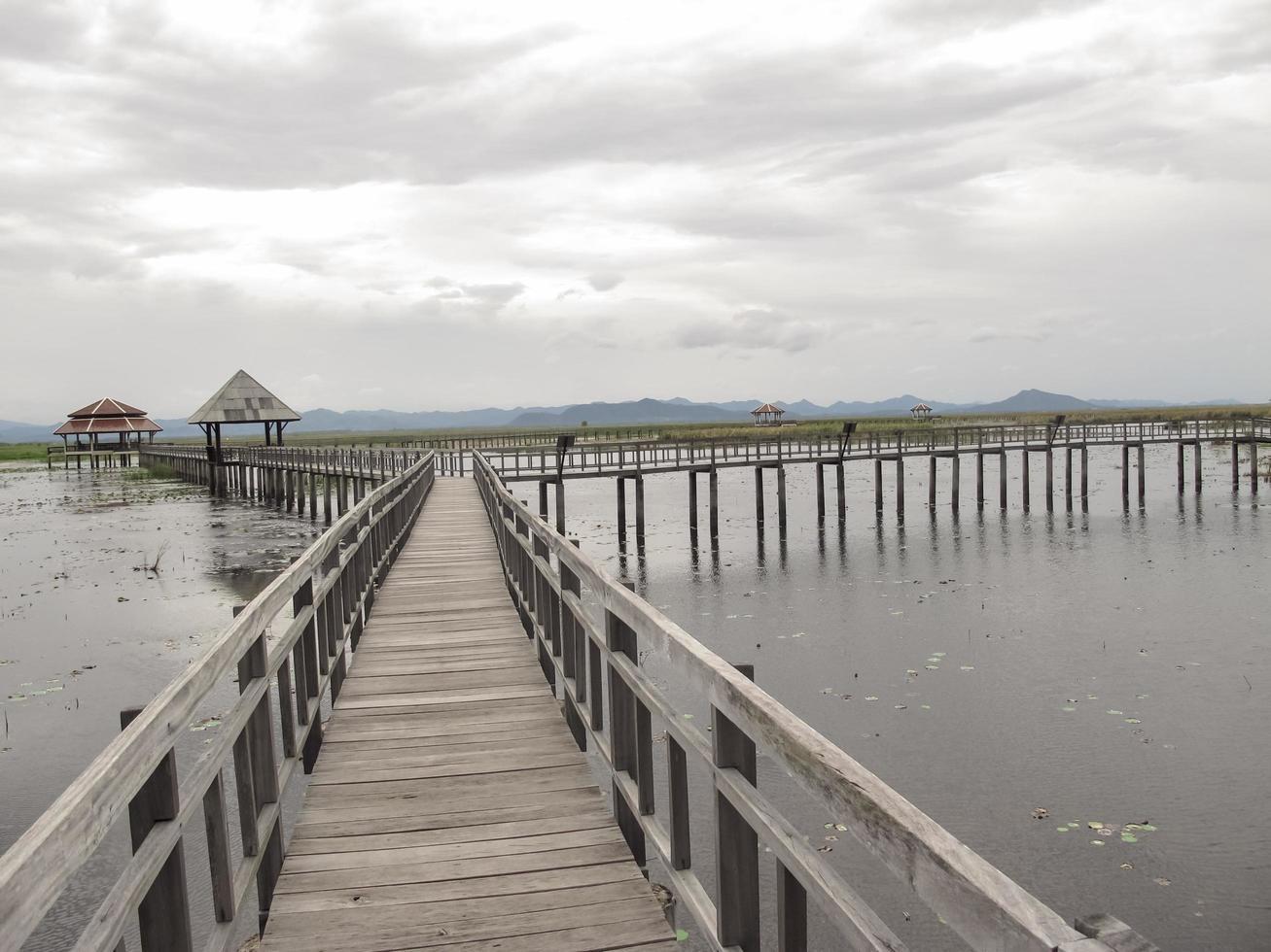 puente sobre el lago foto