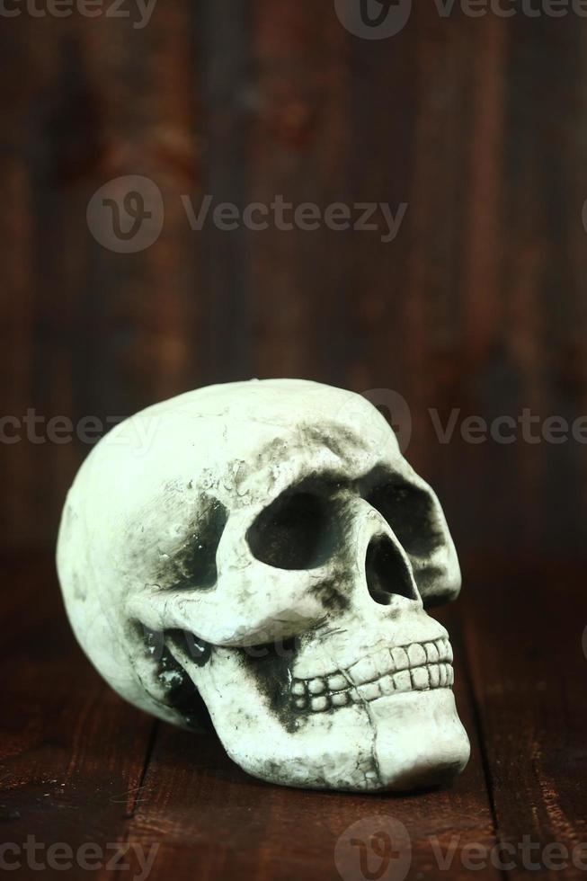 Cráneo sobre fondo de madera grunge rustick foto