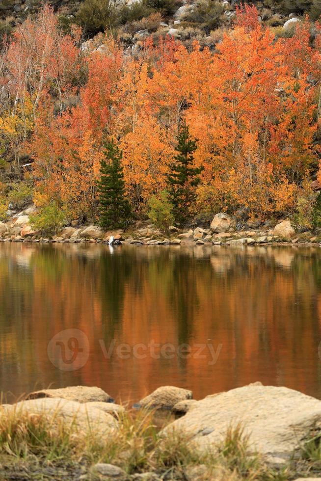 colores de otoño en las montañas de la sierra de california foto