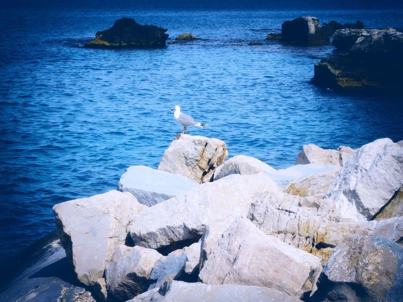 mar al aire libre por día foto