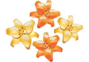 Blumen-Vektor - Lilien-Blumen