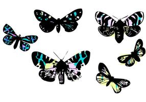 Stained Glass Butterflies by LVF