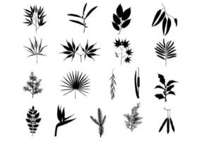 Beautiful Branches Vector Pack