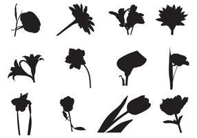 Freie Feldblumen