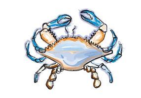 Blå krabba