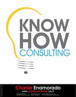 Vector-know-how-consulting