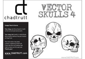 Vector-human-skulls-4