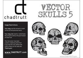 Human-skulls-5-vector