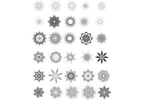 30 Copos de nieve del vector