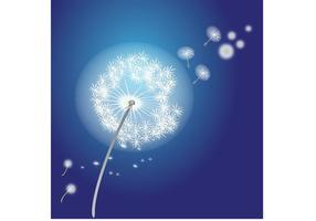 Vector Flower - Dandelion Vector Flower