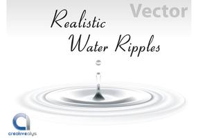 Realistic Vector Water Ripples