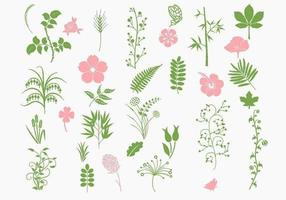 Pink-and-green-organic-vector-pack